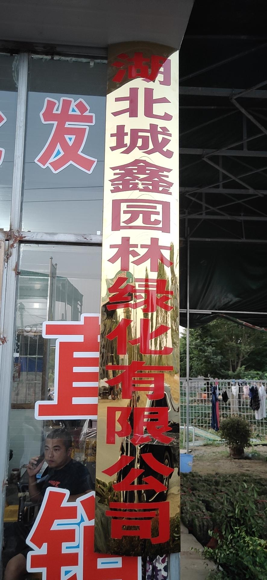 <b>武汉美食节搭建遵循的要求</b>